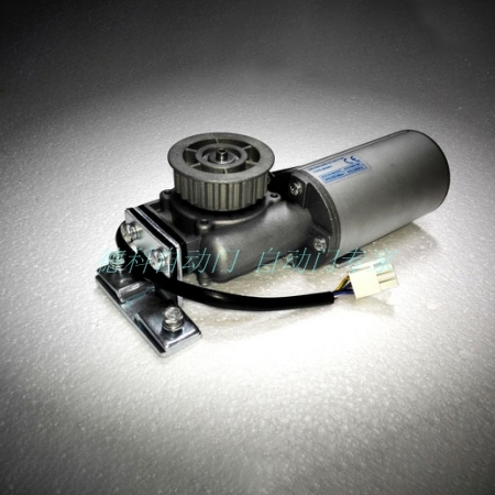 36V brushless DC motor